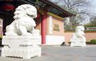 华东地区211大学特色专业介绍:上海交通大学